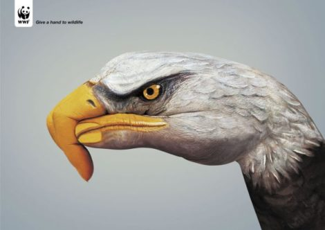 "WWF Plakatkampagne ""Give a hand to wildlife"""