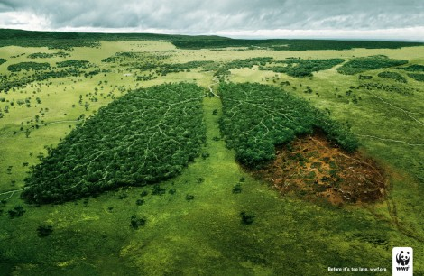 "WWF Plakatkampagne ""Before it's too late"""