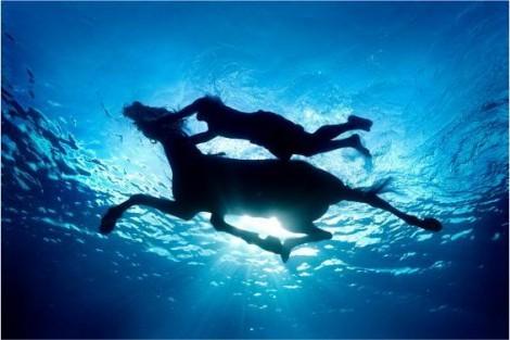 Unterwasserfoto von Zena Holloway (4)