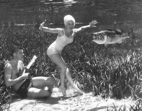 Erste Unterwasserfotos von Bruce Mozertom (2)