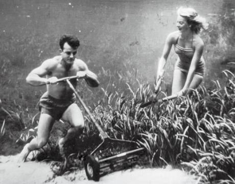 Erste Unterwasserfotos von Bruce Mozertom (5)