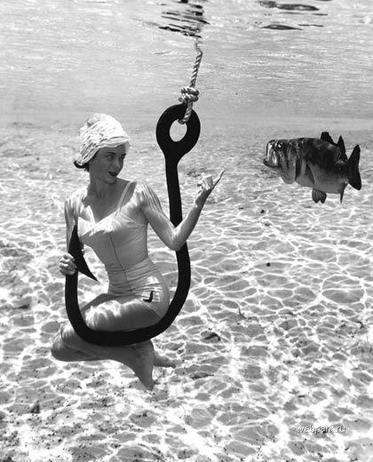Erste Unterwasserfotos von Bruce Mozertom (3)