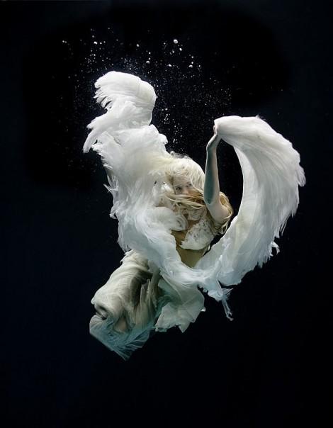 Unterwasserfoto von Zena Holloway (3)