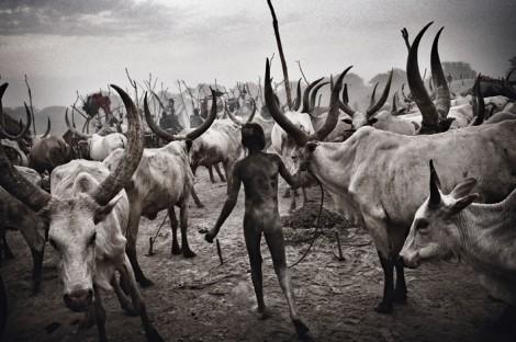 Öl-Reichtum und bittere Armut liegen im Südsudan dicht beieinander: Ein junger Dinka hütet in der Steppe seine Herde