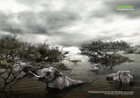 Plakatkampagne gegen den Klimawandel (2)