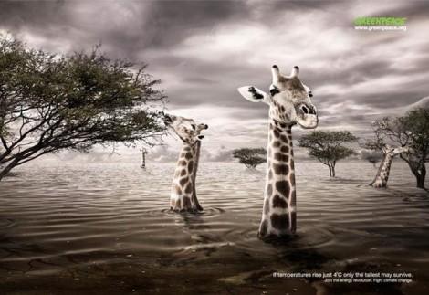 Plakatkampagne gegen den Klimawandel (1)