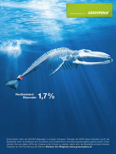 Werbeplakat zum Thema Bedrohung der Meeresbewohner (2)