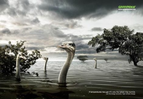 Plakatkampagne gegen den Klimawandel (3)