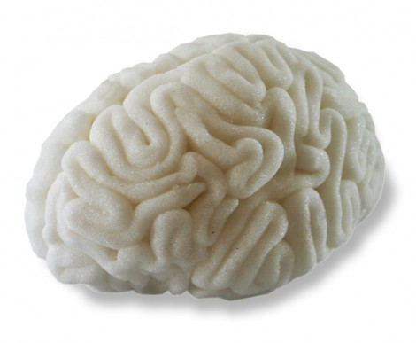 Gehirn aus Zucker