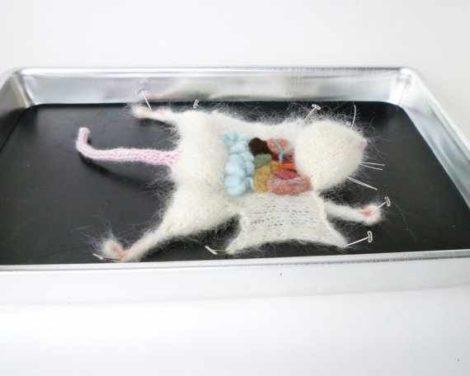 Gehäkelte sezierte Ratte